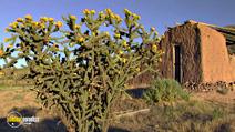 Still #7 from HD Window: The Great Southwest