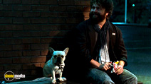 A still #19 from Due Date with Zach Galifianakis