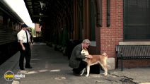 A still #27 from Hachi: A Dog's Tale