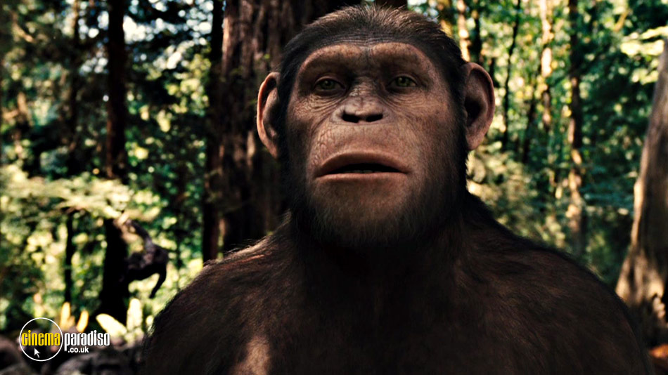 Rise of the Planet of the Apes online DVD rental