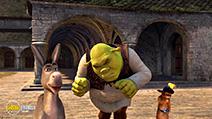 Still #2 from Shrek 2