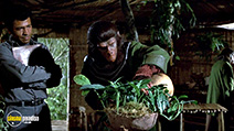 Still #6 from Battle for the Planet of the Apes