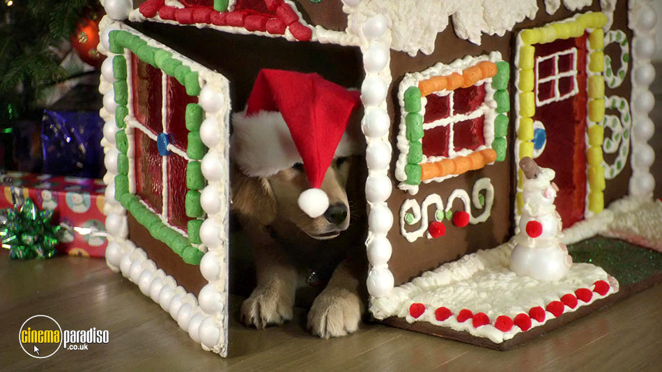 Santa Buddies online DVD rental