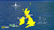 Still #8 from Bill Bailey: Dandelion Mind: Live in Dublin
