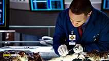 Still #7 from Bones: Series 10