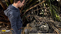 Still #2 from Wilfred: Series 4