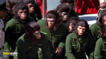 Still #7 from Conquest of the Planet of the Apes