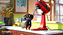 A still #3 from The Secret Life of Pets (2016)