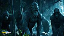 Still #4 from The Legend of Tarzan