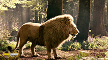 A still #21 from The Chronicles of Narnia: Prince Caspian
