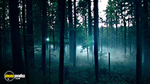 Still #10 from Into the Forest (2015)