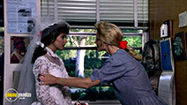 A still #5 from Cannibal Women in the Avocado Jungle of Death with Shannon Tweed and Karen M. Waldron