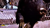 Still #6 from Slaughterhouse (1987)