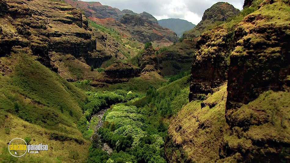 America's Wild States: Wild Hawaii and Wild Florida online DVD rental