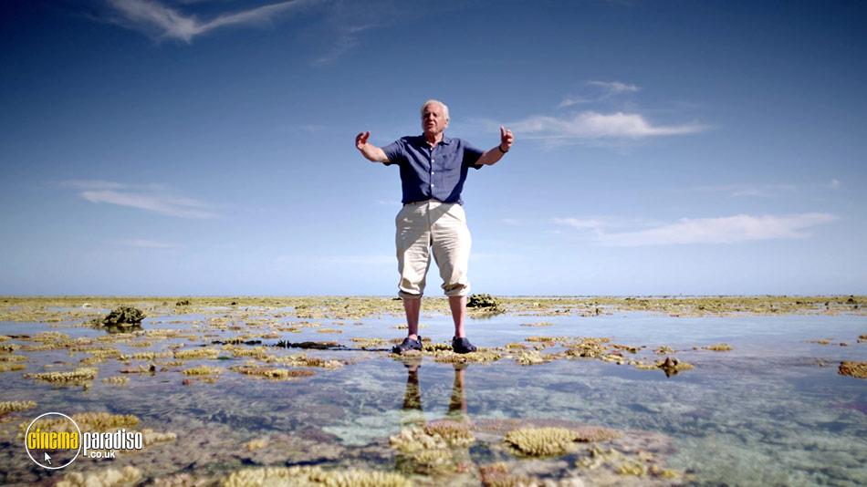 Great Barrier Reef with David Attenborough online DVD rental