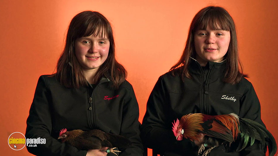 Chicken People online DVD rental