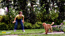 A still #4 from A Dog's Purpose (2017)
