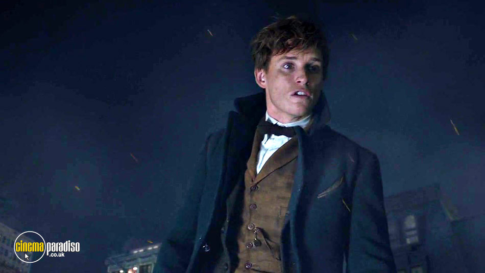 Still from Fantastic Beasts and Where to Find Them