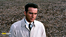 A still #9 from Wild River (1960) with Montgomery Clift