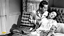 A still #2 from Fallen Angel (1945)
