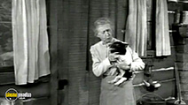 A still #28 from The Beverly Hillbillies: 4 Classic Episodes: Vol.2 (1962)