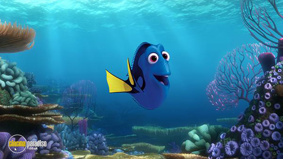 Still from Finding Dory