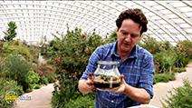 A still #32 from Great British Garden Revival (2014)