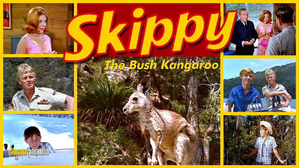 Skippy the Bush Kangaroo online DVD rental