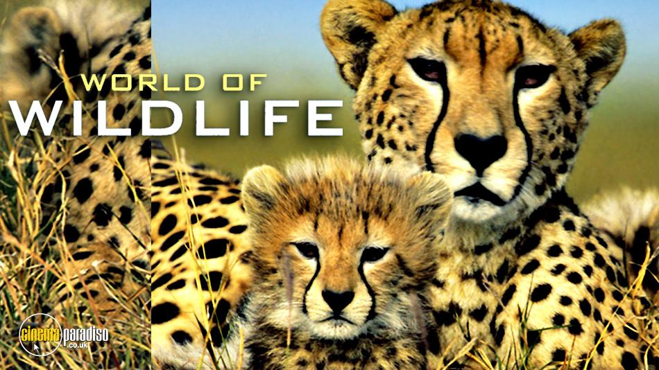 The World of Wildlife online DVD rental