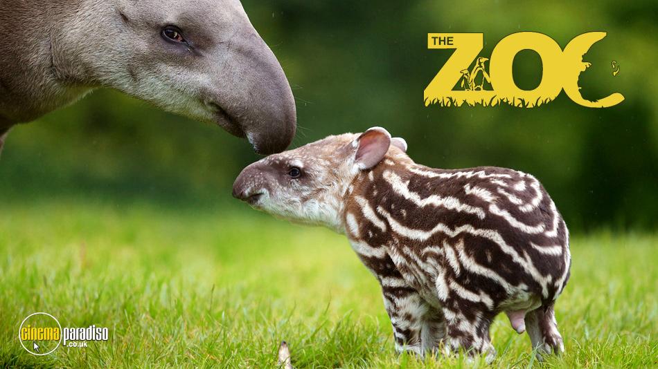 The Zoo Series online DVD rental