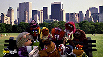 A still #8 from The Muppets Take Manhattan (1984)
