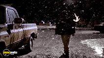 A still #2 from A Dog Named Christmas (2009)