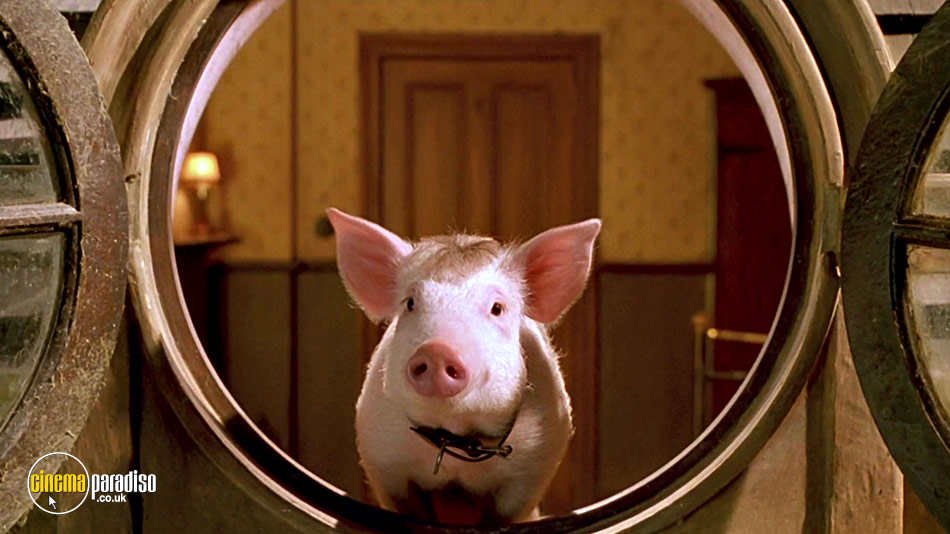 Babe: Pig in the City online DVD rental