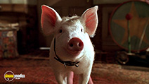 A still #6 from Babe: Pig in the City (1998)
