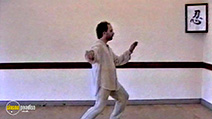 A still #17 from Learn the Art of Tai Chi (2006)