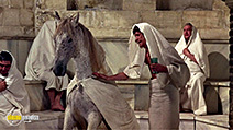 A still #9 from A Funny Thing Happened on the Way to the Forum (1966)