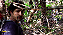 A still #6 from The Bigfoot Tapes (2012)