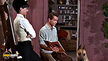 A still #7 from The Ugly Dachshund (1966)
