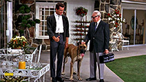 A still #6 from The Ugly Dachshund (1966)