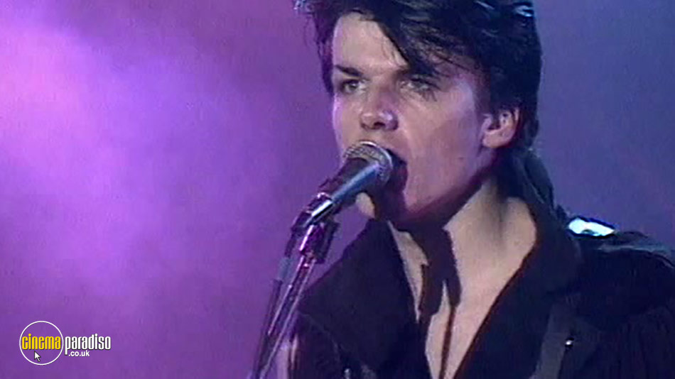 The Blow Monkeys: Animal Magic - Live online DVD rental