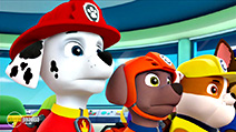 A still #3 from Paw Patrol: Brave Heroes, Big Rescues (2016)