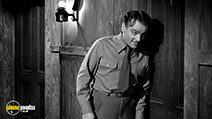 A still #8 from The Bride Came C.O.D. (1941)