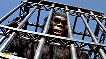 A still #2 from The Mighty Peking Man (1977)