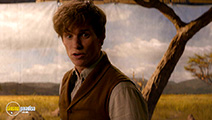 A still #32 from Fantastic Beasts and Where to Find Them (2016)