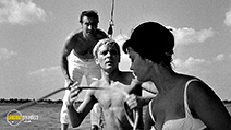 A still #7 from Knife in the Water (1962)
