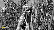 A still #6 from Knife in the Water (1962)