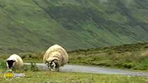 A still #50 from Discover Scotland: Taking the High Road: Vol.2 (2000)