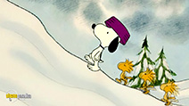 A still #50 from Charlie Brown: A Dog for Xmas (1965)