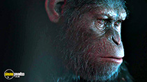War for the Planet of the Apes trailer clip
