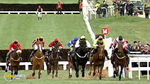 A still #5 from Century of Jumps Racing (2002)